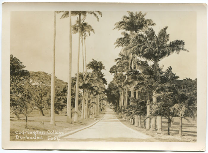 BARBADOS Black & White photograph of