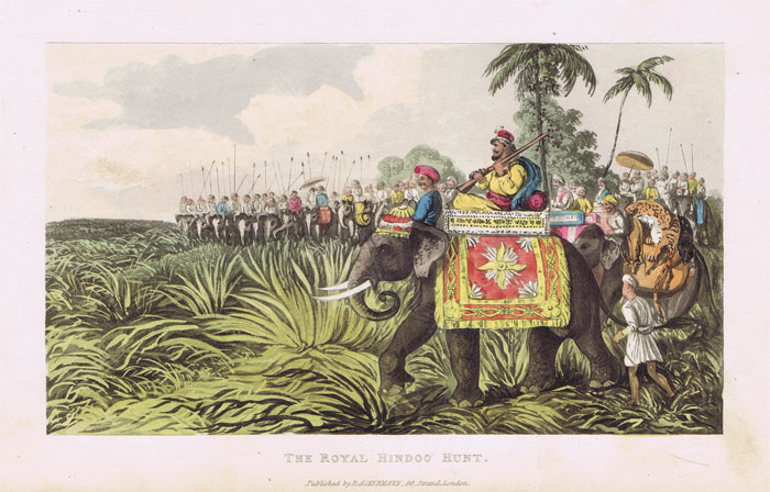 ACKERMANN The Royal Hindoo Hunt.
