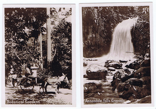 1930 (circa) two small photos of Annandale Falls and the Botanical Gardens.