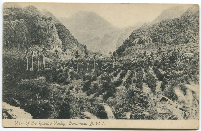 RAPHAEL TUCK & SONS View of the Roseau Valley, Dominica, B.W.I. - No 14 58502