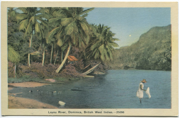PECO Layou River, Dominica British West Indies - 25096