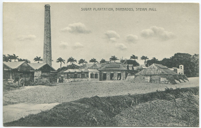 W.L. JOHNSON & CO Sugar Plantation, Barbados, steam mill. - No 23.